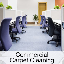 commercial carpet cleaning button