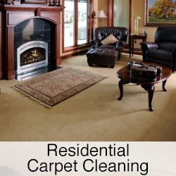 residential carpet cleaning button